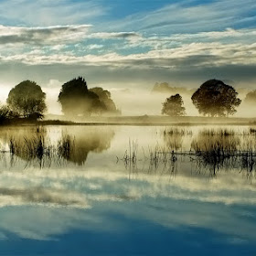 Morning-Fog Colour.jpg