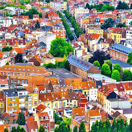 Homes of Brussels by Pravine Chester - Buildings & Architecture Homes ( houses, bird's eye view, buildings, architecture, cityscape, rooftops )