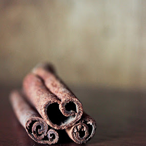 cinnamon by Raz Adyza - Food & Drink Ingredients