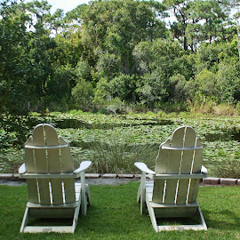 Take a Seat  by Shari Linger - Artistic Objects Furniture ( florida botanical gardens, outdoor seating, relax, tropical, waterways, gardens, botanical, , tranquil, relaxing, tranquility )