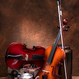 by Rakesh Syal - Artistic Objects Musical Instruments
