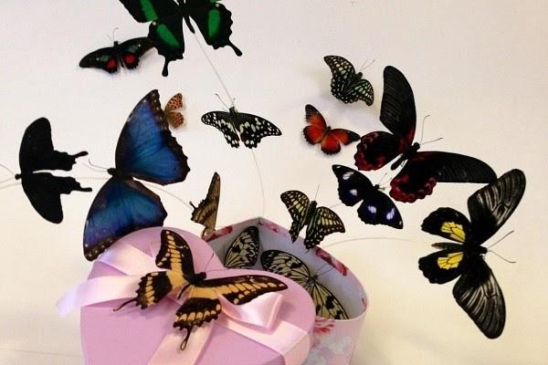 Бабочки как подарок 53