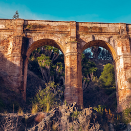 Aquaduct by Roberto Sorin - Buildings & Architecture Bridges & Suspended Structures ( old, europe, stone, architecture, travel, landscape, pont, heritage, spain, montes, southern, ancient, aqueduct, arroyo, construction, water, building, tourism, forest, don ventura, destination, costa del sol, history, malaga, bridge, historical, world, river,  )