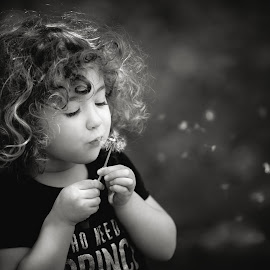 Wish by Mike DeMicco - Babies & Children Child Portraits ( b&w, little, fun, cute, kid, child, blowing, curly, sweet, girl, nature, dandelion, seeds, childhood, hair, flower )