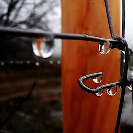 by Jana Kubínová - Abstract Water Drops & Splashes