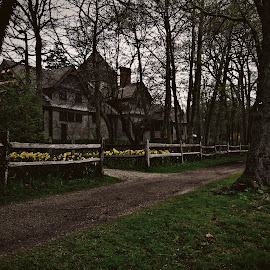 Decrept by Sergio M - Buildings & Architecture Homes ( creepy, dark photography, dark, home photography, haunted, dark parks, home photos, homes )