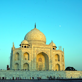 Taj mahal by Asif Bora - Buildings & Architecture Places of Worship