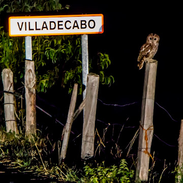 Villadecabo