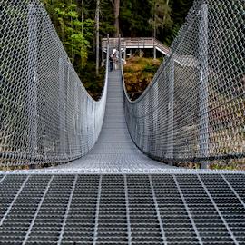 Bridge by Darren Sutherland - Buildings & Architecture Bridges & Suspended Structures