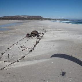 Kakapo's skeleton by Anthony Allen - Travel Locations Landmarks ( noorhoek, sand, paraglider, shipwreck, wreck, ship, kakapo, shadow, cape peninsula, kommetjie, beach, noordhoek, south africa, noordhoekchallenge )