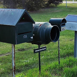 Country Mailbox by Sarah Harding - Novices Only Objects & Still Life ( still life, artistic, novices only, mailbox, country )
