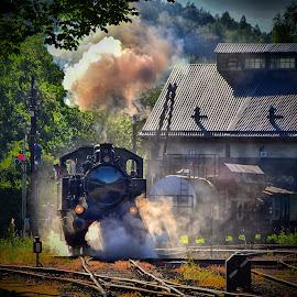 Start-Up ! by Marco Bertamé - Transportation Trains ( steam engine, fond-de-gras, locomotive, luxembourg, steam,  )