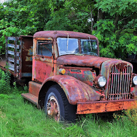 Rusted Treasure by Monroe Phillips - Transportation Other