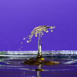 Water carousel by Fred Øie - Abstract Water Drops & Splashes ( abstract )