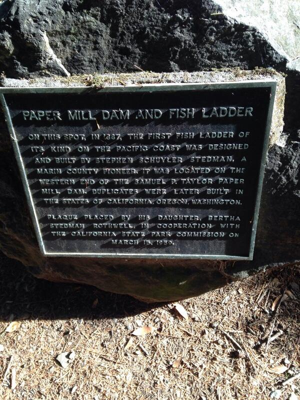 PAPER MILL DAM AND FISH LADDER ON THIS SPOT, IN 1887, THE FIRST FISH LADDER OF ITS KIND ON THE PACIFIC COAST WAS DESIGNED AND BUILT BY STEPHEN SCHUYLER STEDMAN, A MARIN COUNTY PIONEER. IT WAS LOCATED ...