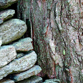 stone wall ends by Martin Stepalavich - Nature Up Close Rock & Stone