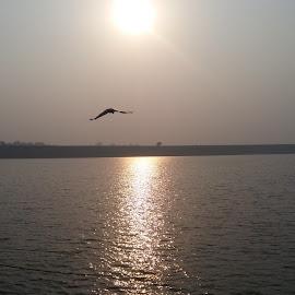 River GANGA  by Ashwin Tiwari - Nature Up Close Water ( #village, #nature, #sunset, #photography, #water )