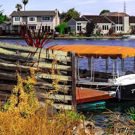 Foster City, CA by Idel Richter-Cahili - City,  Street & Park  Neighborhoods