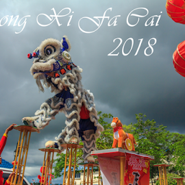 Chinese new year lion dance part nine by Daimasala Abdullah - Typography Captioned Photos ( chines motif, chines new year 2018, plum blossom, illustrations, promotion, blossom, chines, lantern, free, cliparts, calligraphy, vector, layout, festival, year, flowers, design elements, banner, china, 2018, chines painting, chines pattern, pop up baner, marketing, backgrounds, advertisement, seasons greetings, discount, sale, holiday, new, chinese decoration, red, golden frame, prospenty, poster, religon, packet, shopping, celebration, voucher, chinese new year, design, chinese calligraphy )