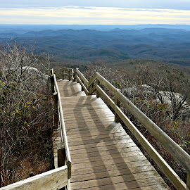 Leading Line by Mary Kaye Zugelder - Landscapes Mountains & Hills ( mountains, winter, new year, blue ridge parkway, hiking, rough ridge )