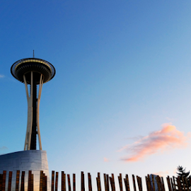 Space Needle by Todd Reynolds - City,  Street & Park  Historic Districts ( space needle, seattle, sunset )