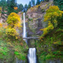 Autumn Falls by Ken Smith - Landscapes Travel ( waterfalls, multnomah falls, landscape, columbia river gorge )