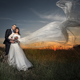 weding by Dejan Nikolic Fotograf Krusevac - Wedding Bride & Groom ( vencanje, photo-fotograf, svadba,  )