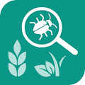 App Agrobase - weed,disease,insect APK for Windows Phone