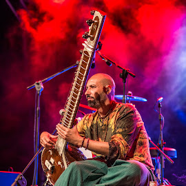 Sitar by Nina Adams - People Musicians & Entertainers ( music, malta, floriana, fusion, indian, cushion, folk music, festival, sitar, argotti gardens )