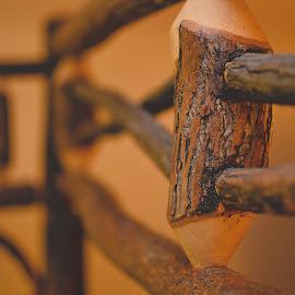 Wood Work by Rebekah Cameron - Buildings & Architecture Office Buildings & Hotels ( wood, details, bedframe )