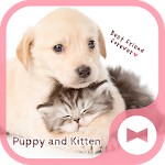 Cute Animal Wallpaper Puppy and Kitten Theme Icon