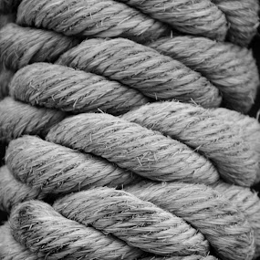 Rope by Sam Reed - Artistic Objects Other Objects