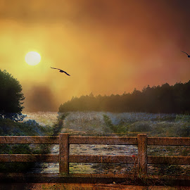 Magical by Danette de Klerk - Digital Art People ( sunset, bridge, water, sun, trees, landscape )