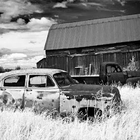 Very Old Cars (in infrared) by Rachel Bilodeau - Transportation Automobiles