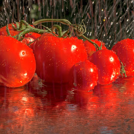 Wet Tomatoes by Jim Downey - Food & Drink Fruits & Vegetables ( water, red, outdoor, tomatoes, reflective )
