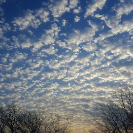 by Linda Murrie - Landscapes Cloud Formations