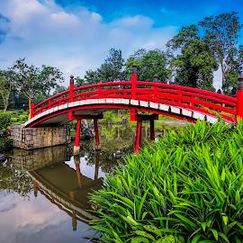 Red Bridge  by Gordon Koh - Buildings & Architecture Bridges & Suspended Structures