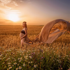 Pregnancy by Marius Igas - People Maternity ( field, wind, sunset, pregnancy, flowers )