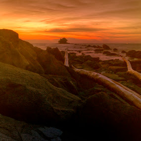 alone  by Mohamad Sa'at Haji Mokim - Nature Up Close Rock & Stone ( trunk, sunset, land, stone, sea )