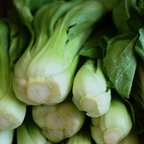 Baby Bok Choy with Sesame and Ginger
