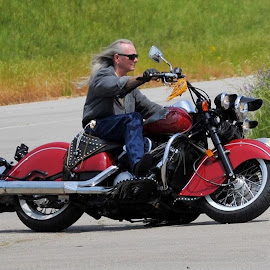 Indian 2 by Christy Stanford - Transportation Motorcycles ( bike, riding, indian, motorcycle, man )