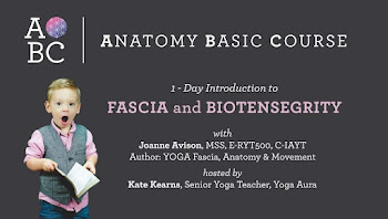 ABC Introduction to Fascia and Biotensegrity