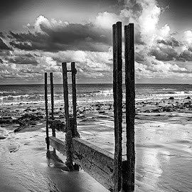Lone Shore by Dave Godden - Landscapes Beaches ( water, defences, coast coastal, old, dave godden, monochrome, black and white, groynes, sea, beach, warren, folkestone, groyne, derelict, mono, english, channel, english channel )