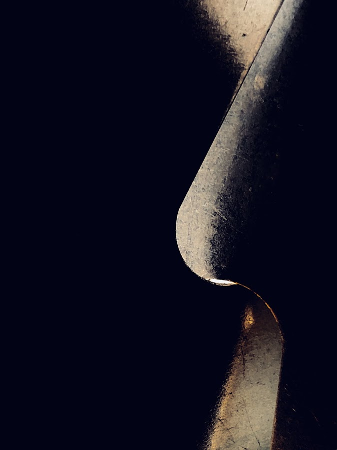 « Whisper» by Eirin Hansen - Abstract Macro
