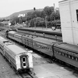 by Cindy Grago - Transportation Trains
