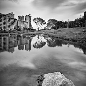 Steadfast by Jonathan Danker - City,  Street & Park  Vistas ( singapore bishan park monochrome rock long exposure )