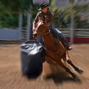 by Bruce Porter - Sports & Fitness Rodeo/Bull Riding