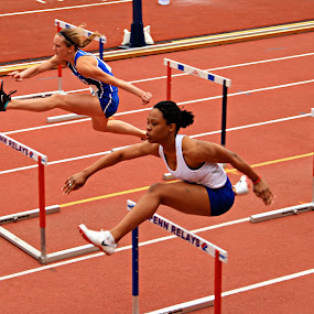 by Alice Gipson - Sports & Fitness Running ( penn relays, hurdles, high hurdles, alicegipsonphotographs, running, active, runner, bani-bands, Bani Bands - RUNNERS Challenge, color, colors, landscape, portrait, object, filter forge, Spring, springtime, outdoors )