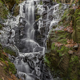 Silver waterfall by Martin Namesny - Nature Up Close Water ( water, stream, ice, creek, waterfall, icing, icicles, frozen )