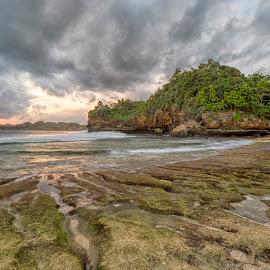 Bengkung beach, Malang by Hansen Majaya - Landscapes Beaches ( shore, malang, mood, sea, ocean, seascape, beach, landscape, sky, indonesia, sunset, cloud, lines,  )